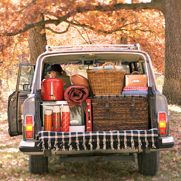 tailgating-picnic-car