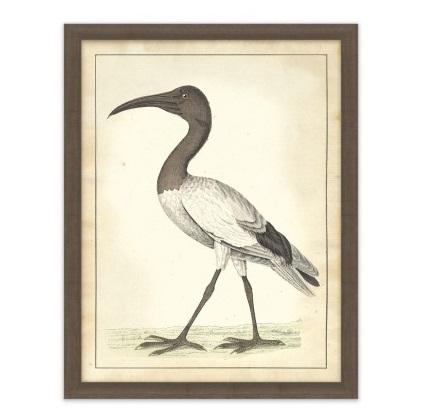 vogel aviary 1