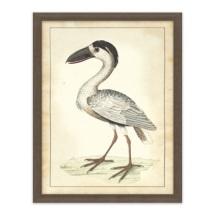 vogel aviary2